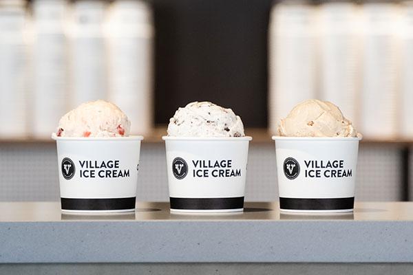 Village Ice Cream Environmental Impact
